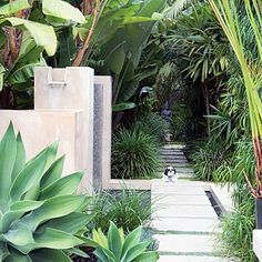A sleek path with over sized rectangle format blocks spaced apart for dwarf mondo grass over a water feature makes for a clean modern look.