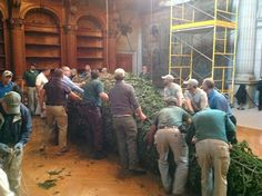 Estate workers position the tree for raising in the Banquet Hall.