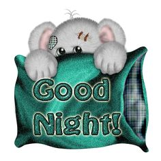 Tatty teddy shying and saying good night Good Night Everyone, Good Night Moon, Good Night Image, Good Morning Good Night, Good Night Prayer Quotes, Funny Good Night Quotes, Good Night Messages, Good Night Blessings, Good Night Wishes