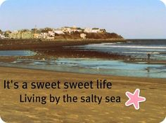 """""""It's a sweet sweet life living by the salty sea.""""  --""""Knee Deep"""" by Zac Brown Band and Jimmy Buffett"""