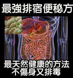 facebook-like: 超強排宿便方法!最天然健康的方式~