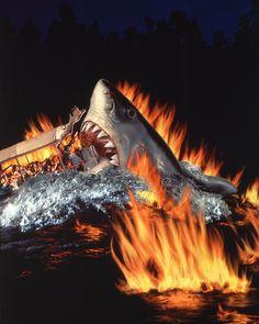 Jaws 2, Jaws Movie, Universal Studios Florida, Nerd Humor, Great White Shark, Shark Week, Horror Films, Whale, Concept Art