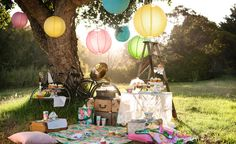 Colourful Chinese lanterns are an inexpensive way to brighten up your garden party