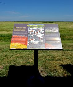 This Wetlands and Wildlife NSB interpretive sign overlooks Cheyenne Bottoms directly across the highway from the Kansas Wetlands Education Center.