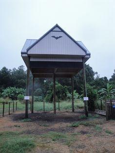 Large bat house at the University of Florida, Gainesville