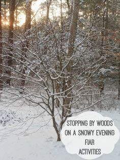 Stopping by Woods on a Snowy Evening (FIAR) - Natural Beach Living Winter Activities For Kids, Activities For Adults, Nature Activities, Preschool Learning Activities, Book Activities, Snowy Day, Snowy Woods, Five In A Row, Animal Tracks