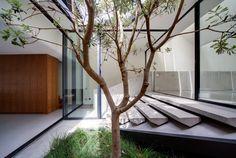 chenchow little architects / skylight house, sydney
