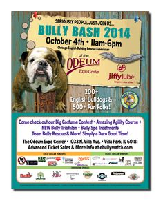 Chicago English Bulldog Rescue - Poster for non-profit fundraiser, Bully Bash 2014.