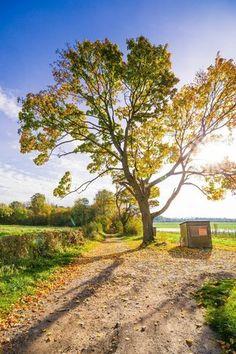 Oude zijweg op een herfstavond