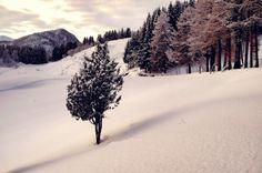 i-long-to-travel-the-world:  thephotographerssociety:...