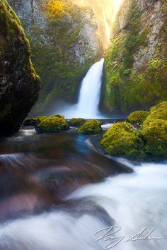 Light pours into the canyon above Wahclella Falls in the Columbia River Gorge.