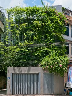 vo trong nghia renovates house in hanoi with cascading green façade