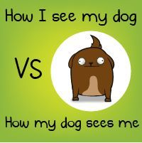 How I see my dog VS how my dog sees me - The Oatmeal