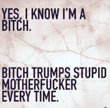 Yes, I know I'm a bitch. Bitch trumps stupid motherfucker every time.