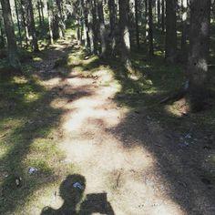 Polkujuoksua, trailrunning