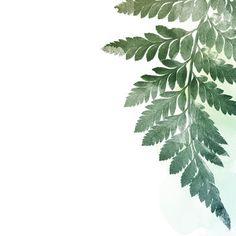 Fern Leaf Print Watercolour Leaf Print by GeorgieStClair Cherry Blossom Watercolor, Watercolor Leaves, Watercolor Print, Fern Images, Leaf Prints, Art Prints, Leaf Drawing, Paint And Sip, Cactus Print