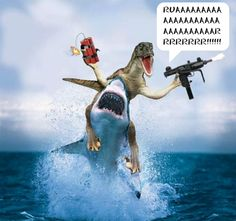 dino shark fuond   Sound off on this Sip Cancel reply