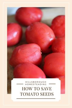 Everything you need to know about saving tomato seeds for next year! Begin your permaculture journey by seed saving - the easy way. | Hillsborough Homesteading