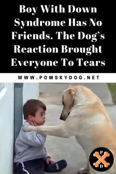 german shepherd dogs - Boy With Down Syndrome Has No Friends The Dog's Reaction Brought Everyone To Tears PomskyDog Down Syndrome Dog, Cute Baby Animals, Funny Animals, Having No Friends, Dog Stories, Boy Dog, Funny Animal Videos, Funny Kids, I Love Dogs
