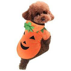 edaf890dc92e Cute Cartoon cat Dog Puppy Teddy Halloween Christmas Funny Pumpkin Costume  Hoodie Coat Jacket Clothes Soft Coral Velvet Fleece Winter Warm Hooded  Sweater ...