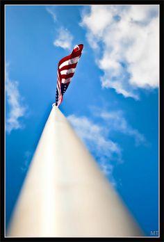 Run it up the flagpole.