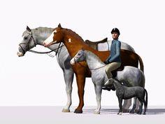 Sims 3 Slider Mod | The game so nice, you play it twice! Gratis nedladdningar till Sims 3 ...