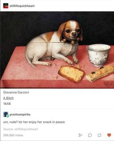 Stilllifequickheart Giovanna Garzoni A Bitch um, rude? let her enjoy her snack in peace - iFunny :) Stupid Funny Memes, Funny Posts, The Funny, Hilarious, Funny Art, History Memes, Art History, Art Memes, Dankest Memes