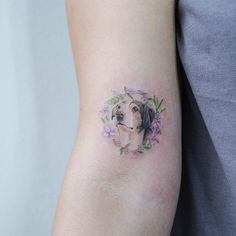 Jasminum sambac,Edelweiss . 반려견 + 꽃…