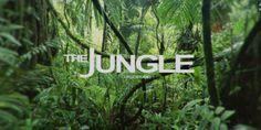Creating A Realistic Jungle Scene in Cinema 4d