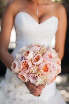 Blush garden roses. Photography By / http://kevinlevuweddings.com