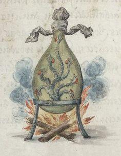 A Hydra in a flask - Splendor Solis