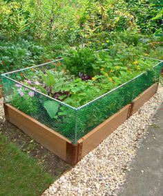 Look what I found on #zulily! 4' x 8' Two-Level Animal Barrier Raised Garden Bed Frame by Frame It All #zulilyfinds