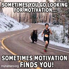 lol well thats motivation lol Hope you all had a wonderful Monday any of you have the day off funny funnymeme fitness fitnessmotivation fitnessmemes memes bear motivationmemes goodnight monday lol laugh haha sleepwell Frases Humor, Memes Humor, Funny Memes, Funniest Memes, Funny Sayings, Funny Shit, Haha Funny, Funny Cute, Funny Stuff