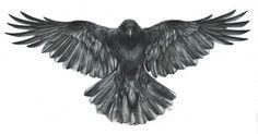 Open Wings Flying Crow Tattoo Design Idea
