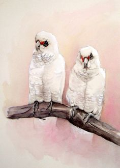Little Correllas, Watercolour Painting