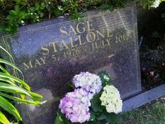 Sage Moonblood Stallone May 1976 ~~ July 2012 buried at Westwood Memorial Park. Sylvester Stallone Children, Sage Stallone, Famous Tombstones, Famous Graves, Cemetery Art, Memorial Park, Grave Memorials, Find A Grave, Film Director