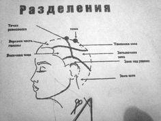 мужская стрижка схемы - Поиск в Google