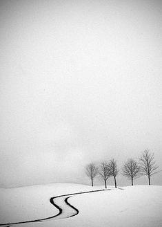 Snow, winter, black and white Winter Szenen, I Love Winter, Winter Magic, Winter White, Winter Road, Winter Walk, Minimalist Photography, Snow Scenes, Winter Beauty