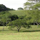 STUDIO PEGASUS - Serviços Educacionais Personalizados & TMD (T.I./I.T.): Balneários de Santa Maria / RS (e região): TIMBAÚV...
