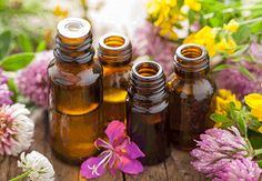 Which oils have the greatest anti-aging benefits? After researching, we list the top anti-aging oils, which includes both essential oils and carrier oils. Essential Oils Allergies, Top Essential Oils, Therapeutic Essential Oils, Essential Oil Blends, Natural Teething Remedies, Natural Remedies, Natural Treatments, Essential Oils For Depression, Carrier Oils