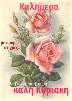 Good Morning, How To Plan, Buen Dia, Bonjour, Good Morning Wishes