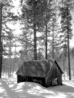Shooting in the Snow - Digital Photo Secrets