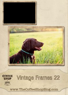 CoffeeShop Vintage Frame 22 for digital scrapbooking and blogs.