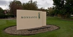 Monsanto stock not looking good, dumped by hedge funds - http://buzz.naturalnews.com/000947-Monsanto-hedge_funds-stock_market.html