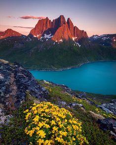 Senja, Norway - by Arild Heitmann
