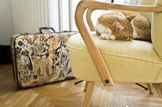 Fotel lata 60. XX wieku po renowacji / Armchaire from 60s after renowation #wood, #wax, #renovation, #old ferniture, #armchair, #interior design, #vintage