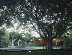 ファンズワース邸(Farnsworth House) : 建築写真ブログ