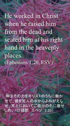 He worked in Christ when he raised himfrom the dead and seated him at his righthand in the heavenly places.(Ephesians 1:20, ESV) 神はその力をキリストのうちに働かせて、彼を死人の中からよみがえらせ、天上においてご自分の右に座せしめ、 (口語訳 エペソ 1:20)