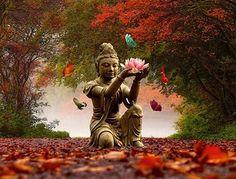 meditazione_camminata_1.jpg (600×457)