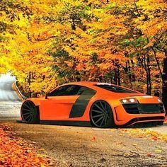 home other - Luxury Motor Press Audi Tt S, Audi R8, Classic Hot Rod, Volkswagen Group, Exotic Sports Cars, Bugatti, Lamborghini, Ferrari, Performance Cars